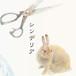 1st album「シンデリア」