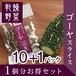 1個分お得セット(10+1パック)ゴーヤスライス 乾燥野菜(干し野菜)