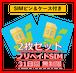 お得な2枚セット!【プリペイドSIM】31日間無制限(SIMピン&ケース付き)