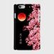 「月と夜桜」