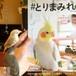 #とりまみれ(マガジンハウス ムック)