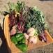 7000円旬野菜セット(ファミリーにおすすめ)