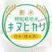 新米・特別栽培米 キヌヒカリ 白米27kg〈1週間以内で発送〉