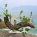 【送料無料】流木の花器、フラワーベース、17-大