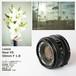 CANON New FD 50mm F1.8 キヤノン #4991048