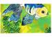 2011年「青い金魚」絵はがき
