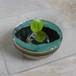 花器 緑釉