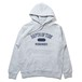Depth of Tide Collage Hoodie (Heather Gray)
