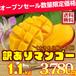 沖縄県産訳ありマンゴー1kg【3玉】
