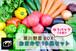 【予約】2020年7月 黒川野菜BOX~おまかせ10点セット(ゆうパックでお届け)