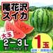 尾花沢スイカ(大玉 7-8kg玉×1玉入り)