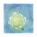 Mariko Hirai フォトdeアート シャボン玉アートパステル原画  【遠くであなたの声が聞こえてる】