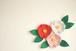 ウォールガーデン・椿(3個セット/グレー)