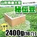 秘伝豆(2400g)