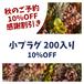 秋のご予約10%感謝割引【小プラグ】