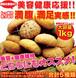 ほろっと柔らか☆ヘルシー&DIET応援☆新感覚満腹おから豆乳ソフトクッキー1kg≪常温≫