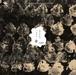 「茶の木仏のつぶやき」今年90歳を迎えた音響デザイナー・大野松雄の最新作CD