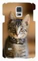 スマホケースGalaxy S5「子猫」(送料無料)