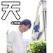 【有馬芳彦】ブロマイド⑤【天】セット(4種入り)