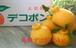 高知県産 デコポン 5kg