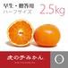 【完売】虎の子みかんハーフ・早生【贈答用2.5kg】
