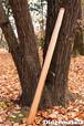 DM006 ディジュリドゥ(木の種類:杉のディジュリドゥ / D )