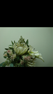 ■A様 専用■供花アレンジメント■