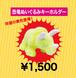 恐竜ぬいぐるみキーホルダー【MIRACLE GLITTER TOUR】