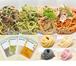 冷凍パスタソース・生パスタ各4種セット