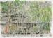 「水彩画ミニアート」京都 哲学の道