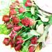 【午前中までのご注文で【即日発送可能】【送料無料】 【成人の日】【誕生日】 20本のバラの花束(生花)・たて長タイプ FL-SE-01