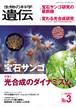 『生物の科学 遺伝』2018年72-3(5月発行号)全冊PDF(別サイトで縮刷版の閲覧可)