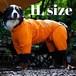 【ALPHAICON】2020年モデル レインドッグガード 1Lサイズ アルファアイコン RAIN DOG GUARD 1L