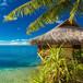 Tahiti Chai(小)