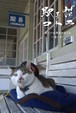 絵はがき【白ベンチの駅長猫】
