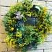Mimosa wreath L