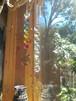 7チャクラ -tree of life- クリア&虹