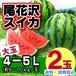 尾花沢スイカ(大玉 9-10kg玉×2玉入り)