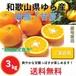 【早期予約受付中】和歌山県由良町産 柑橘 甘夏【ご家庭用】サイズ混合 3kg /箱 期間限定【送料無料】