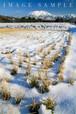 貝田からの冬の大山