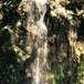 豊穣の黄金光線の滝アチューメント