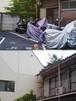 『切断芸術写真 P8280027』糸崎公朗