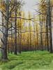 「カラマツ林は秋」