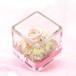 プチギフト Cube ミルキーピンク  〜小さな宝石箱〜