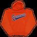"""""""N.Y."""" Syracuse Vintage Hoodie Used"""