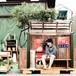 (CD)ガクヅケ木田の真夏ディナーショー
