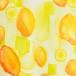 ポストカード「プロチダレモン」