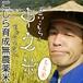 こしら育成無農薬米 立川こしらの中之米(ちゅうのまい)※もち米1㎏