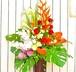 E0226) 南国風開店お祝いスタンド花
