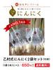 乙村式にんにく2袋セット10本【送料無料】
